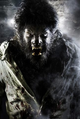the-wolfman-2009